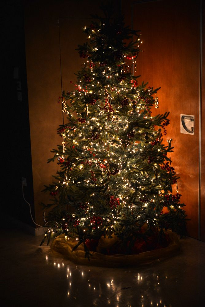 One of 2014's Christmas trees @ Elefsina Hotel