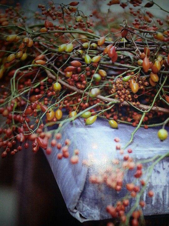 Vandaag ineens het gevoel in herfst der kleuren de geur en de leule materialen