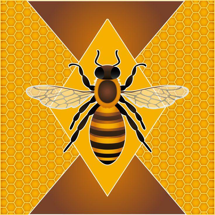 Ape. Illustrazione ape con sfondo alveare. #giuliabasolugrafica #illustration #vector #graphic #drawing #illustrator #digitalart #bee