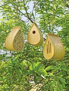Set of 3: a mason bee house, a bird house, & a butterfly house, all in sustainable bamboo.  I'd love to receive this set as a gift. - rueth