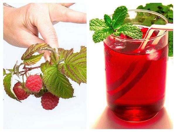 Ceaiul din frunze și fructe de zmeur este un adevărat elixir pentru afecțiunile ginecologice, pe care orice femeie, tânără sau matură, ar trebui să îl aibă în casă.