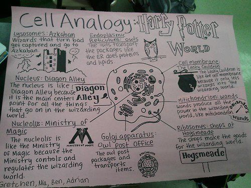 Harry Potter meets Cell Biology...the science nerd in me loves this!