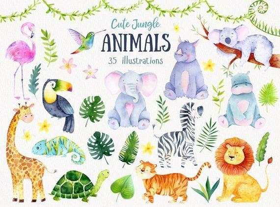 Jungle Animlas Safari Watercolor Clipart Babyshower Jungle Safari Animal Woodland Clipart Nursery Jungle Baby Animals Elephant Koala Jungle Animals Clip Art Animal Clipart