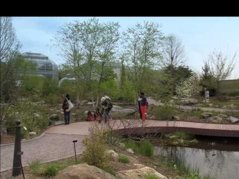 U.S. Botanic Garden in April