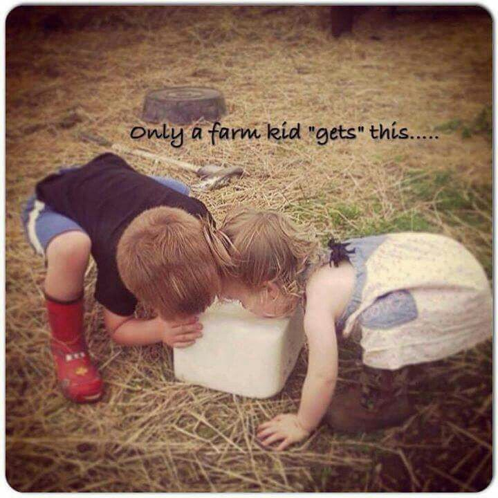 """Only a farm kid """"get's this""""... Life of a farm kid"""