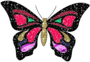Imagenes De Mariposas Brillantes | imagenes de mariposas - Brillantes de mariposa