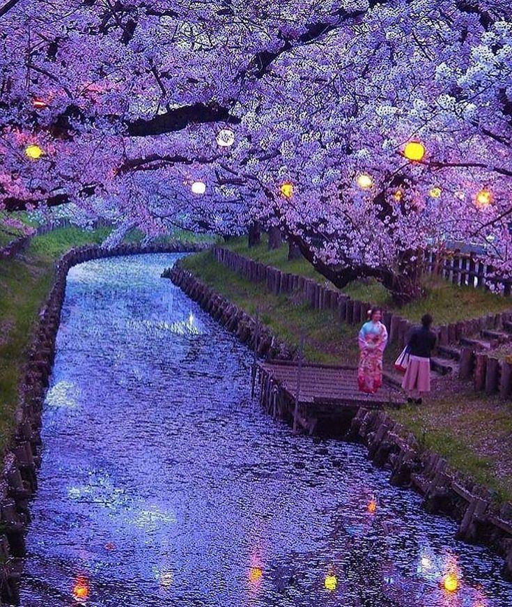 ☆ Travel / Landscape (@awesome.pix):「 Saitama, Japan Photo by @t.hagi1013 」