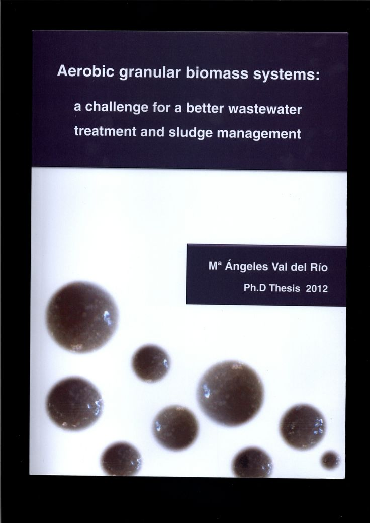 Aerobic granular biomass systems : a challenge for a better wastewater treatment and sludge management / Mª Angeles Val del Río; [directores, Ramón Méndez Pampín, Anuska Mosquera Corral, José Luis Campos Gómez]
