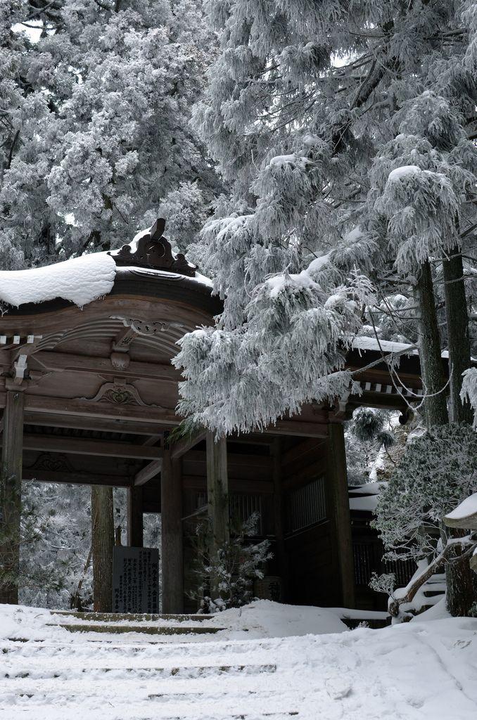 Kyoto 愛宕山@京都