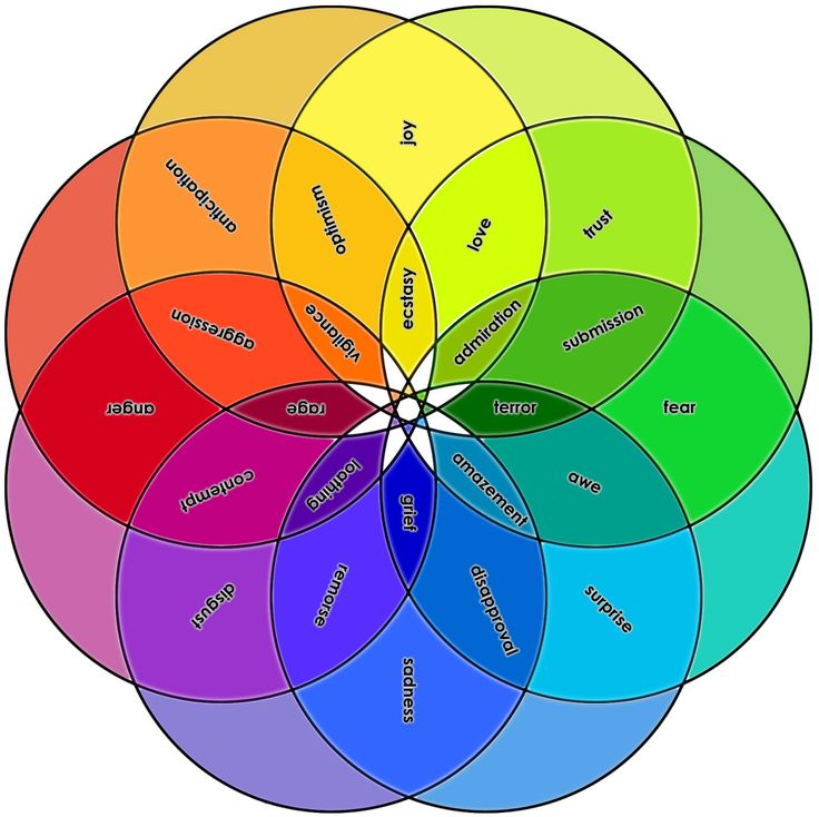In the 1980, Psychologist Robert Plutchik developed a theory of emotions. This wheel is used to illustrate different emotions, with 8 primary bipolar emotions: joy versus sadness; anger versus fear;...