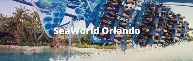 SeaWorld® Orlando é o parque ideal para aqueles que amam as atrações e tudo o que se relaciona com a vida marinha. No lugar, você vai encontrar montanhas russas e brinquedos de alta velocidade, além de incríveis espetáculos com animais entre os quais se destacam orcas, golfinhos e leões marinhos. O que você está esperando para conhecer este parque?
