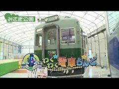大阪にあるみさき公園今年で60周年になる複合的な施設で動物園や遊園地これからの季節はプールだったりイベントではけものフレンズとコラボしたりしてるけどここにはなんといってもわくわく電車らんどっていうのがあって様々な電車車両が展示してあるんですよ  鉄人28号のような顔で有名な特急ラピートは運転士体験もできるんですね  tags[大阪府]