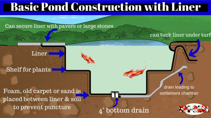 102 best koi tastic images on pinterest backyard ponds for Koi pond construction guide