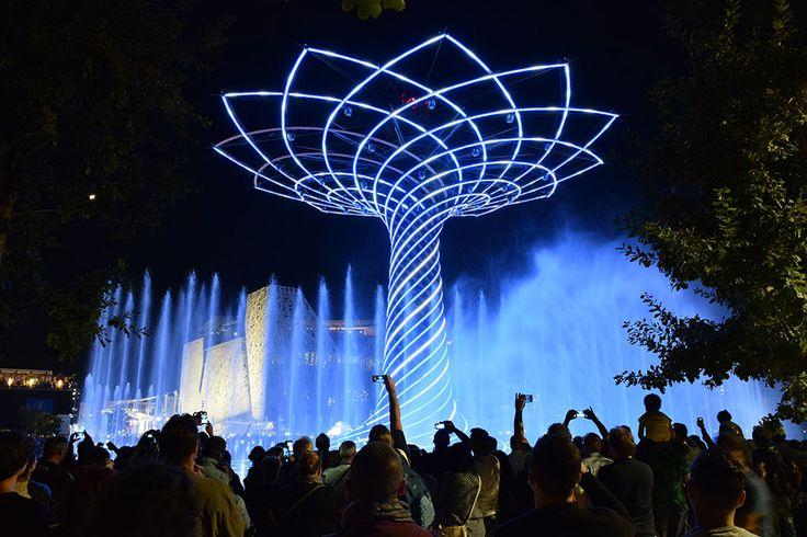 The Tree of Life. The colours of Expo Milan 2015 #raiexpo #expo2015 #worldsfair #milan #italy #treeoflife #alberodellavita #colours #life #water