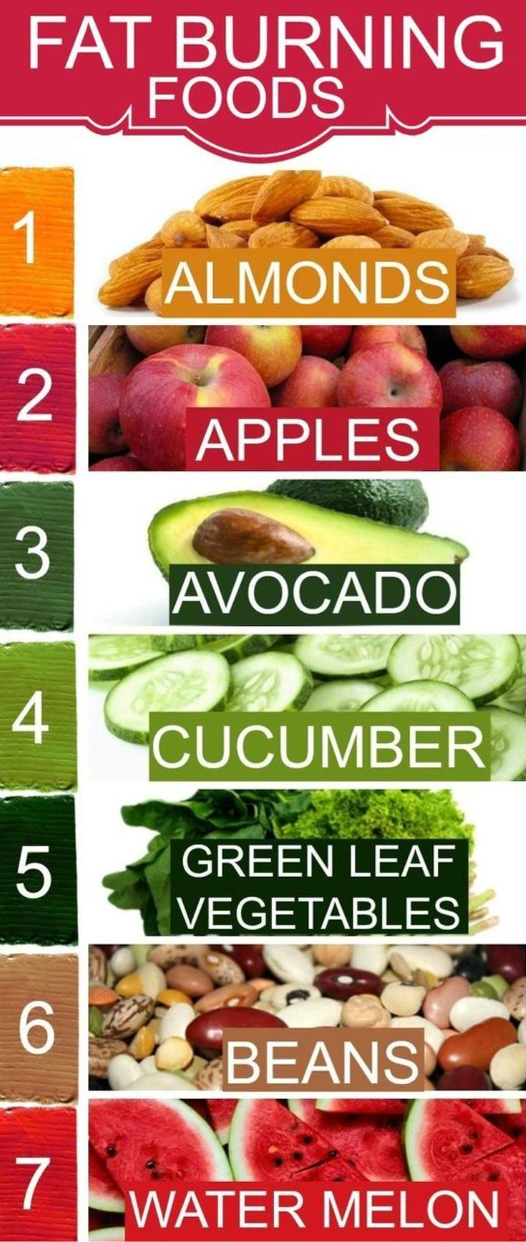 Best 25 weight loss foods ideas on pinterest weight loss food foods to avoid during weight loss ccuart Images