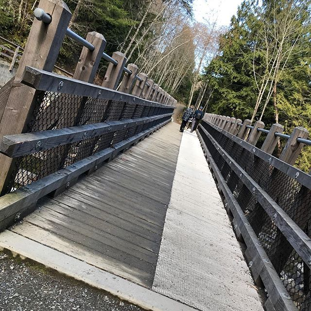 We found this great hike near Ladysmith BC with wooden steps bridges and waterfalls - Holland Creek Hike.