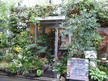見た目はお花屋さんにしか見えない「flower&cafe風花」。美しい緑に覆われた入り口がとても目を引きます。