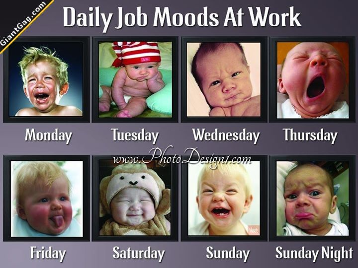 Daily Job Moods At Work Click The Link To View Today S