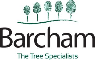 Barcham - The tree specialists