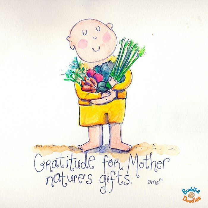 Gratitude Buddha Quotes: Best 25+ Mother Nature Quotes Ideas On Pinterest