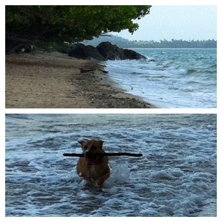 Freya with King Tide @ Garners Beach