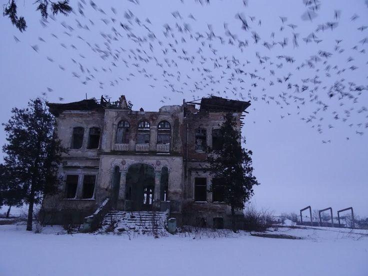 Conacul boierului Gabroveanu din Negoi, Dolj
