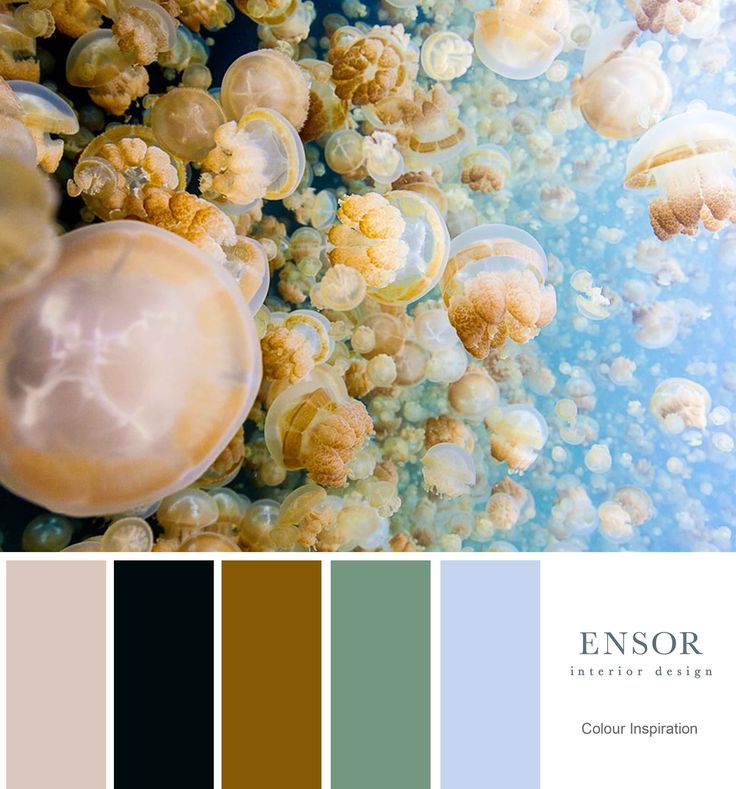 Lovely colours these jellyfish provide. #design #interiors #ensor