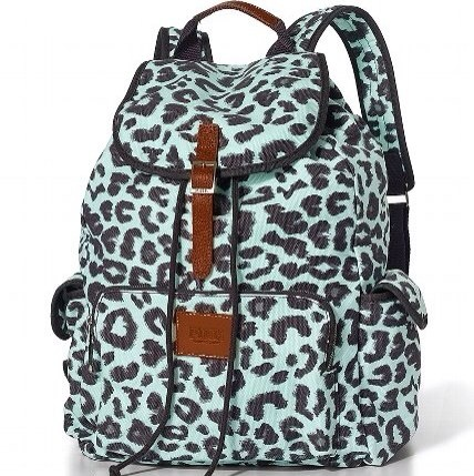 Photopoll: Best Backpack?