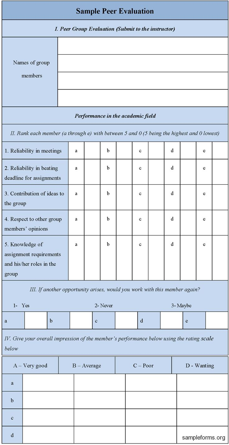 Download Editable Sample Peer Evaluation Form for only $4.99