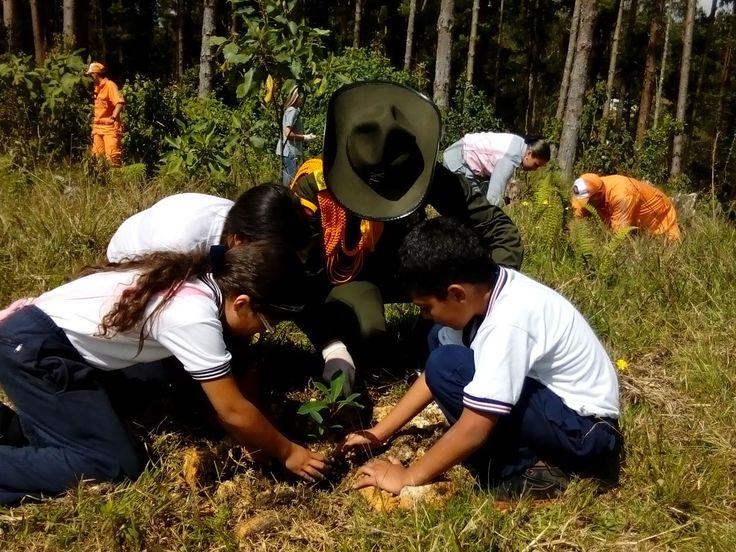 Trabajemos unidos por preservar nuestro ecosistema. Que este sea el #Compromiso de todos. #Colombia