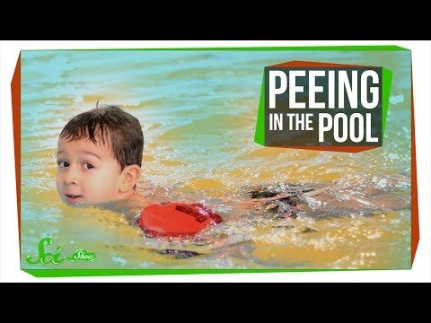 Peeing in the Pool Causes a Dangerous Chemical Reaction - Thrillist