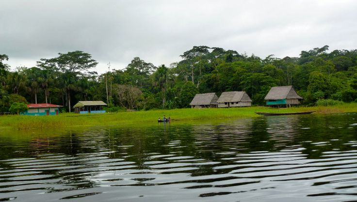 #AtoZChallenge L: Living on the Amazon River   Review From The House #AmazonAdventure #Fishpictures #Amazoncrafts