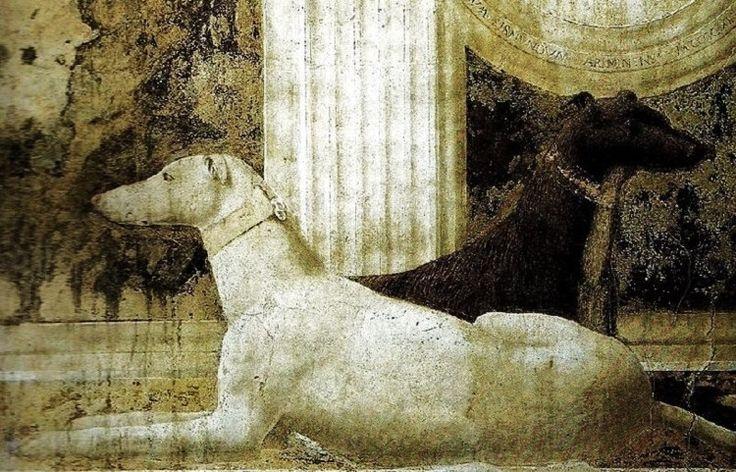 Piero della Francesca - detail of the dogs from St Sigismund and Sigismondo Pandolfo Malatesta
