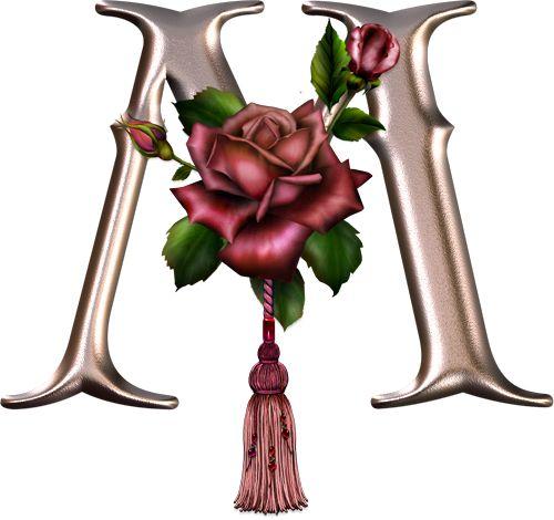 Alfabeto rosa con rosas. | Oh my Alfabetos!