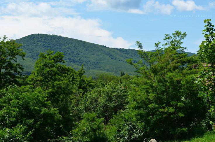 Börzsöny - mountain range in Northern Hungary (Diósjenő, Nógrád county, Hungary)