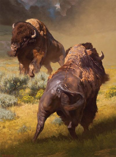Bison - painting.  Beautiful!