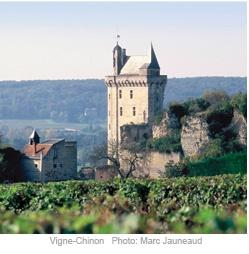 Chinon in Loire France