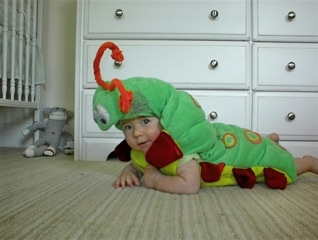 Crawling baby caterpillar!  This makes me want to have another baby just to see him/her crawling around in this get-up!