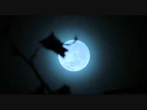 Karva Chauth 2015 Moon Rise Time, Moon Puja Vidhi Video YouTube | Karva Chauth 2015 Images