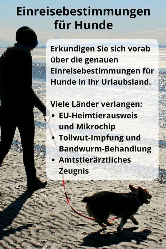 Informieren Sie sich vorab über #Einreisebestimmungen der Urlaubsländer für #Hunde #EU #Heimtierausweis #Tollwut #Impfung #Bandwurm #Amtstierarzt