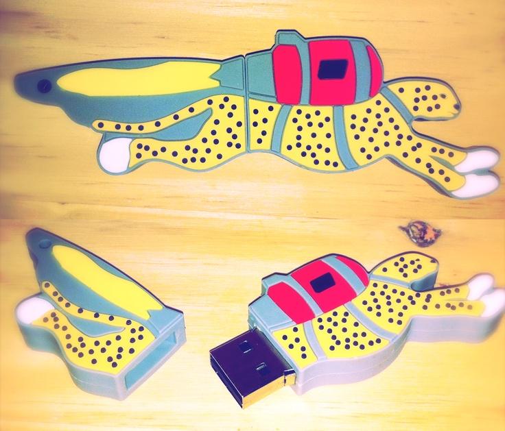 Epson Cheetah Custom USB Drive
