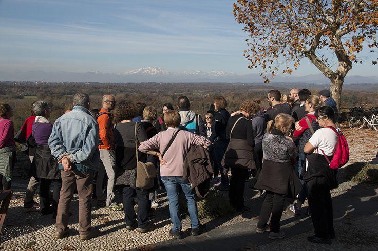 Visite guidate nel Parco del Ticino