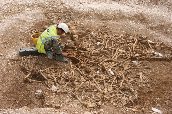 Today is the anniversary of the A.D. 1002 St. Brice's Day Massacre, when the Anglo-Saxons attempted to kill all the Vikings in England. Archaeologists have now uncovered two mass burials that might hold the remains of Vikings slain on that bloody day.