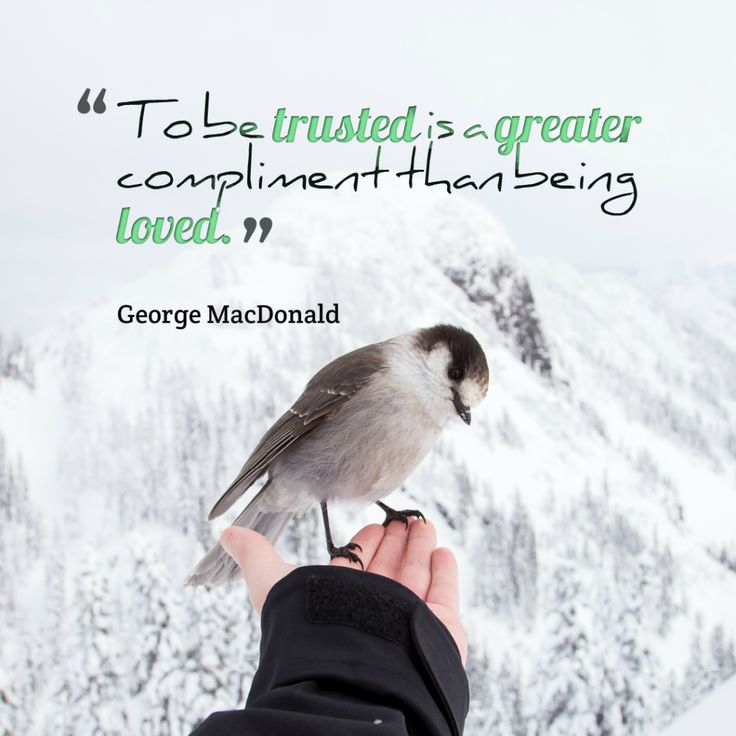 Today Quote: To be trusted is a greater compliment than being loved.