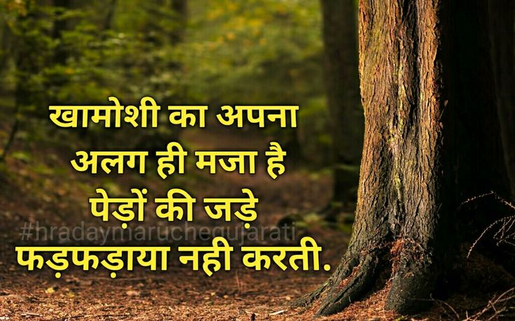 Hard Life Quotes In Hindi: 25+ Best Hindi Quotes On Pinterest
