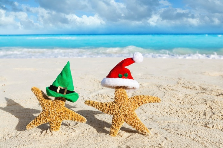 Here's wish you clean, litter free beaches, and a very merry HAPPY HOLIDAYS!