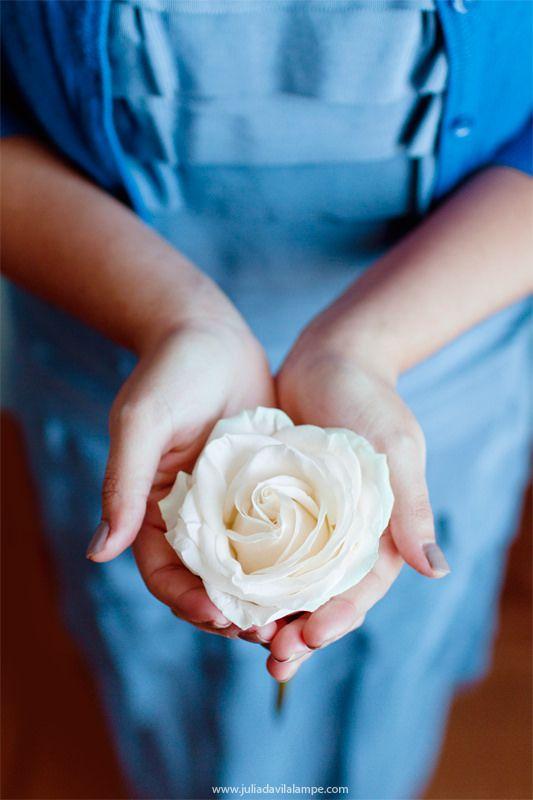 разгар белые розы в ладонях фото любил гулять