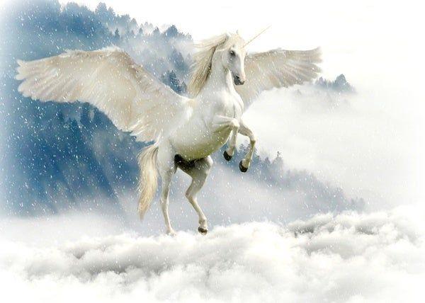 ما تفسير رؤية الحصان المجنح أو الطائر في المنام Mythical Creatures Unicorn Images Unicorn