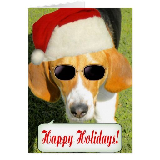 santa and dogs christmas cards | Funny Santa Dog Christmas Greeting Card | Zazzle