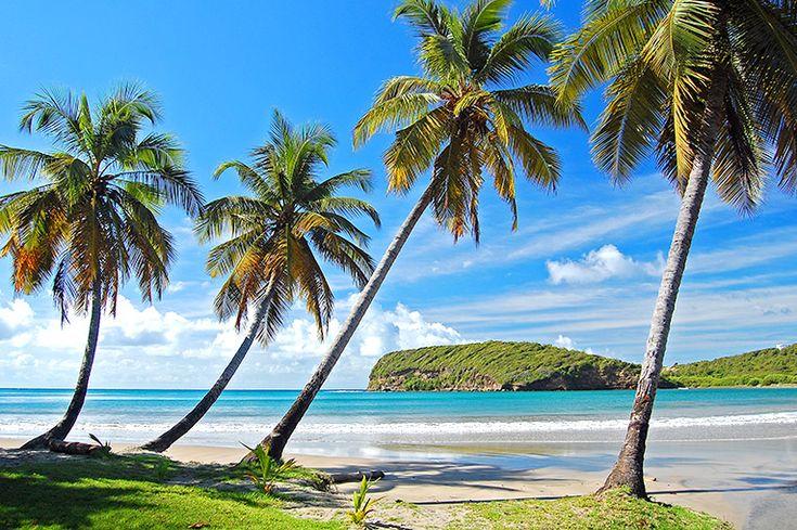 Grenada (344 km²) #grenada #ö #västindien #karibien #paradis #travel #resa #semester